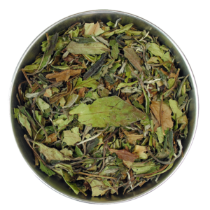 Pai Mu Tan Organic White Tea (No.203)
